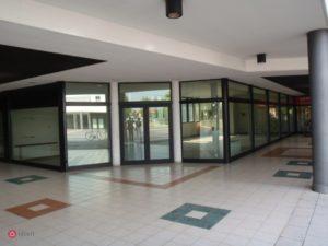 Treviolo, via delle Betulle , affittasi negozio di 135 mq